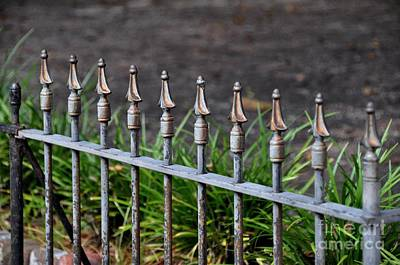 Photograph - Iron Fence by John Black