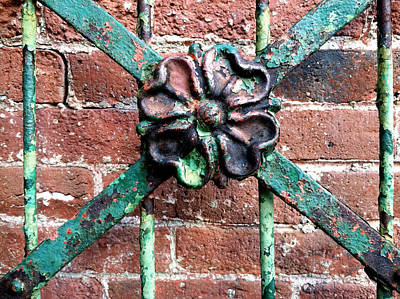 Photograph - Iron Flower by Frank Winters