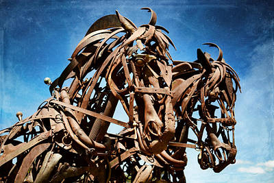 Photograph - Iron Horse by Matt Hanson