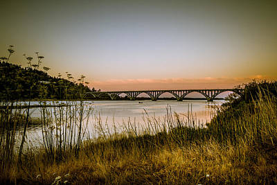 Art Print featuring the photograph Isaac Lee Patterson Bridge by Randy Wood