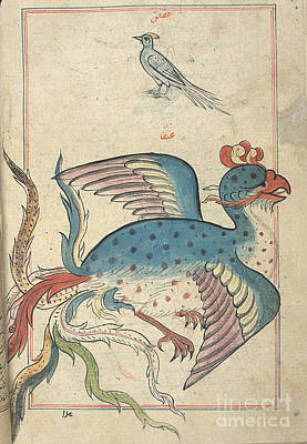 Allah Photograph - Islamic Mythical Bird, Simurgh, 17th by Science Source