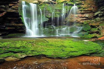 Photograph - Island By The Falls by Adam Jewell