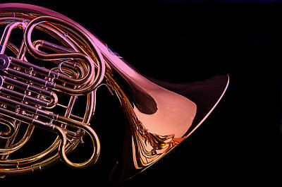 Photograph - Isolated French Horn by M K  Miller