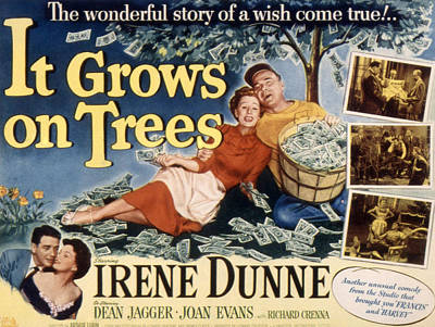 Fid Photograph - It Grows On Trees, Irene Dunne, Dean by Everett