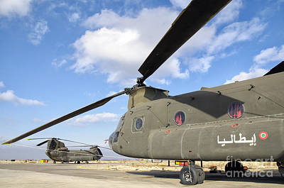 Rowing Royalty Free Images - Italian Army Ch-47c Chinook Helicopters Royalty-Free Image by Giovanni Colla