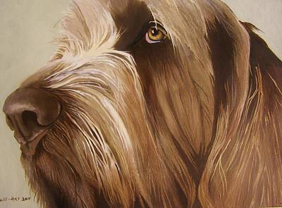 Painting - Italian Spinone by Eric Burgess-Ray