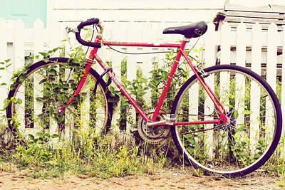 Country Cottage Photograph - Ivy Bike by Laura George