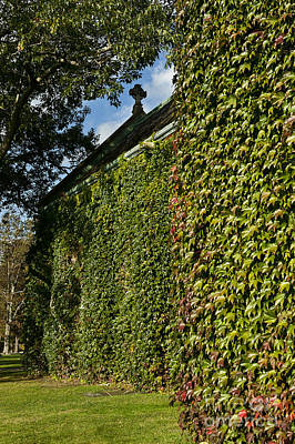 Pomfret Photograph - Ivy Covered Chapel by John Greim
