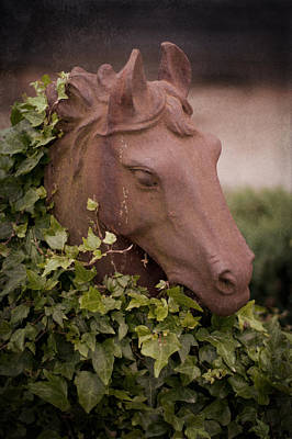Photograph - Ivy Covered Horse Head Statue by Ethiriel  Photography
