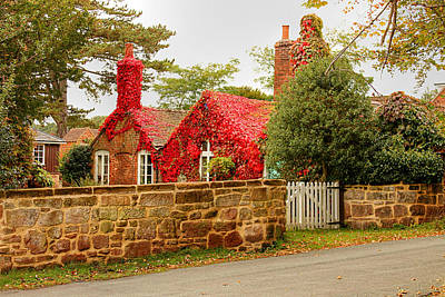 Photograph - Ivy On Country Cottage by Sarah Broadmeadow-Thomas