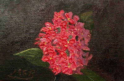 Painting - Ixora Bloom by Maria Soto Robbins