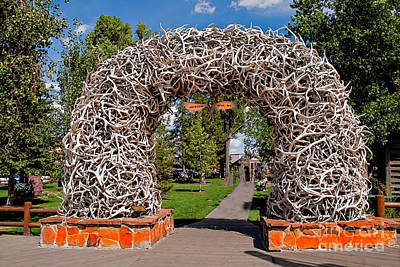 Jackson Hole Art Print by Robert Bales