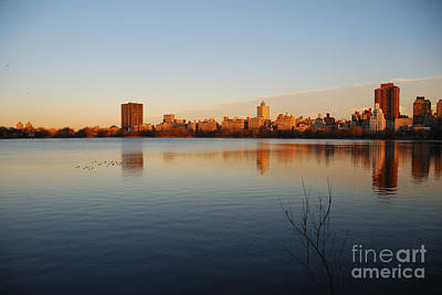Photograph - Jacqueline Kenedy Onassis Reservoir by Alan Clifford