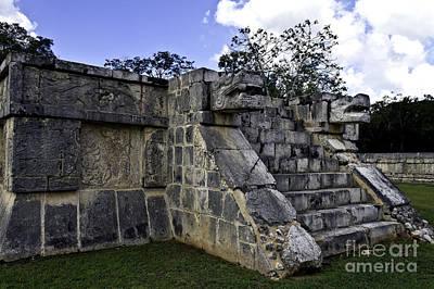 Photograph - Jaguar Stairs by Ken Frischkorn