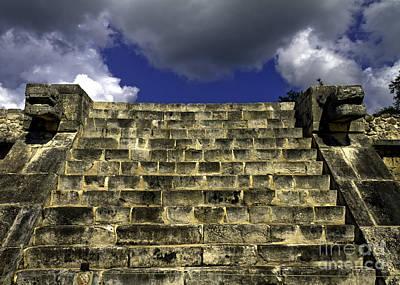 Photograph - Jaguar Stairway Two by Ken Frischkorn