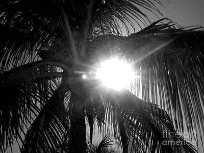 Anna Duyunova Art Photograph - Jamaica Sun by Anna  Duyunova