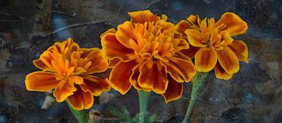 Janet's Marigolds Art Print by Lisa Moore