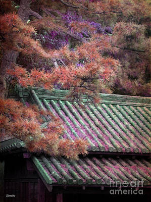 Photograph - Japanese Dream by Eena Bo
