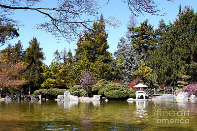Photograph - Japanese Friendship Garden . San Jose California . 7d12782 by Wingsdomain Art and Photography