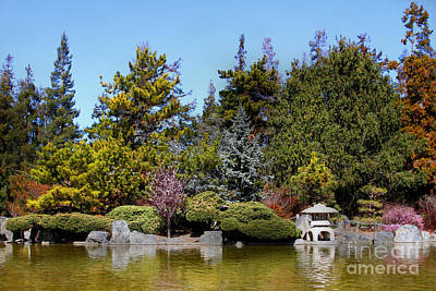 Photograph - Japanese Friendship Garden . San Jose California . 7d12781 by Wingsdomain Art and Photography