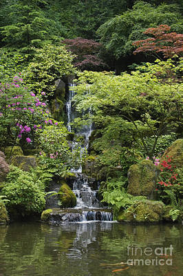 Photograph - Japanese Garden - Portland Oregon by Craig Lovell