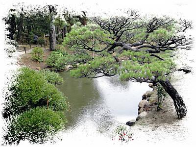 Photograph - Japanese Garden by Allan Rothman