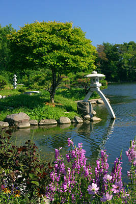 Art Print featuring the photograph Japanese Garden by Cindy Haggerty