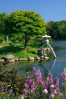 Japanese Garden Art Print by Cindy Haggerty