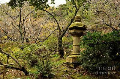 Photograph - Japanese Garden In Autumn 2 by Dean Harte