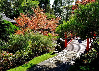 Photograph - Japanese Garden In Hobart by Kirsten Giving