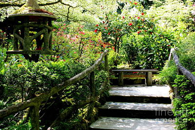 Photograph - Japanese Garden Retreat by Carol Groenen
