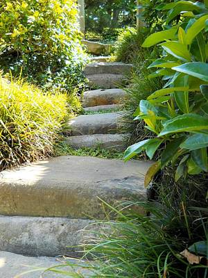 Photograph - Japanese Garden Stone Steps by Lynnette Johns