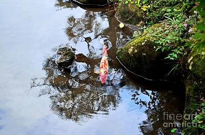 Photograph - Japanese Koi Pond by Dean Harte
