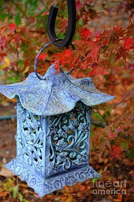 Chinese Red Maple Tree Photograph - Japanese Lantern In Garden by Jim And Emily Bush