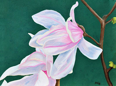 Painting - Japanese Magnolia by Jan Amiss