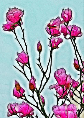 Photograph - Japanese Magnolias by Judi Bagwell