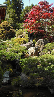 Photograph - Japanese Tea Gardens San Francisco by Richard Reeve