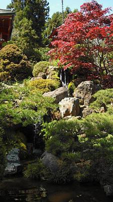 Photograph - Japanese Tea Gardens San Francisco by Richard Reeve