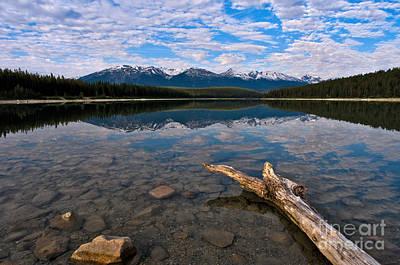Jasper - Patricia Lake Morning 2 Art Print by Terry Elniski
