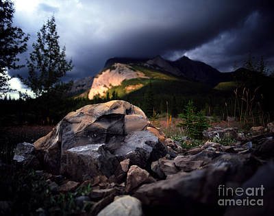 Jasper - Summer Storm Art Print by Terry Elniski