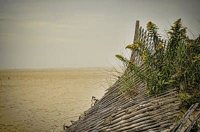 Photograph - Jersey Shore by Heather Applegate