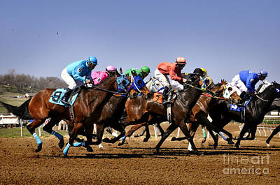 Art Print featuring the photograph Jockeying For Position by Nava Thompson