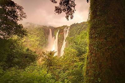 Lush Photograph - Jog Falls by Photograph by Arunsundar