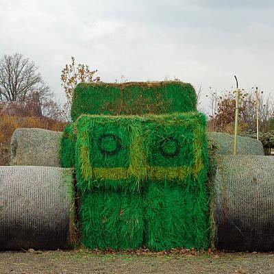 Straw Photograph - John Deer Made Of Hay by LeeAnn McLaneGoetz McLaneGoetzStudioLLCcom