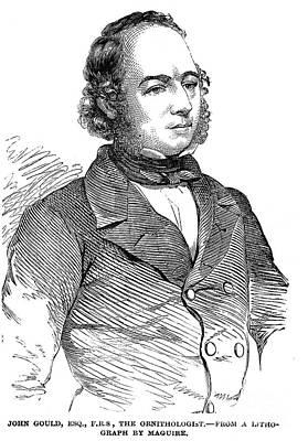 John Gould (1804-1881) Art Print by Granger