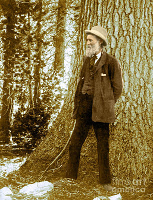 Photograph - John Muir, Naturalist by Science Source