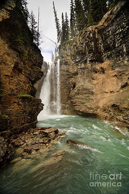Photograph - Johnston Canyon Falls by Dennis Hedberg