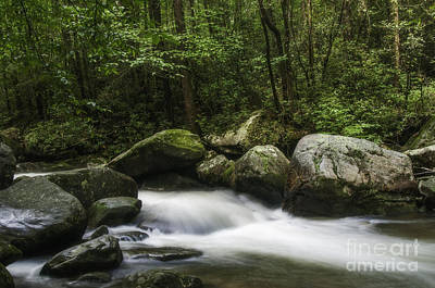 Photograph - Jones Gap Rush by David Waldrop