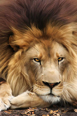 Lion Digital Art - Joseph by Big Cat Rescue
