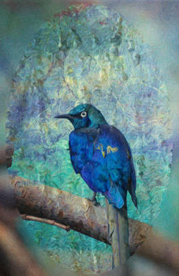 Photograph - Josh's Blue Bird by Trish Tritz